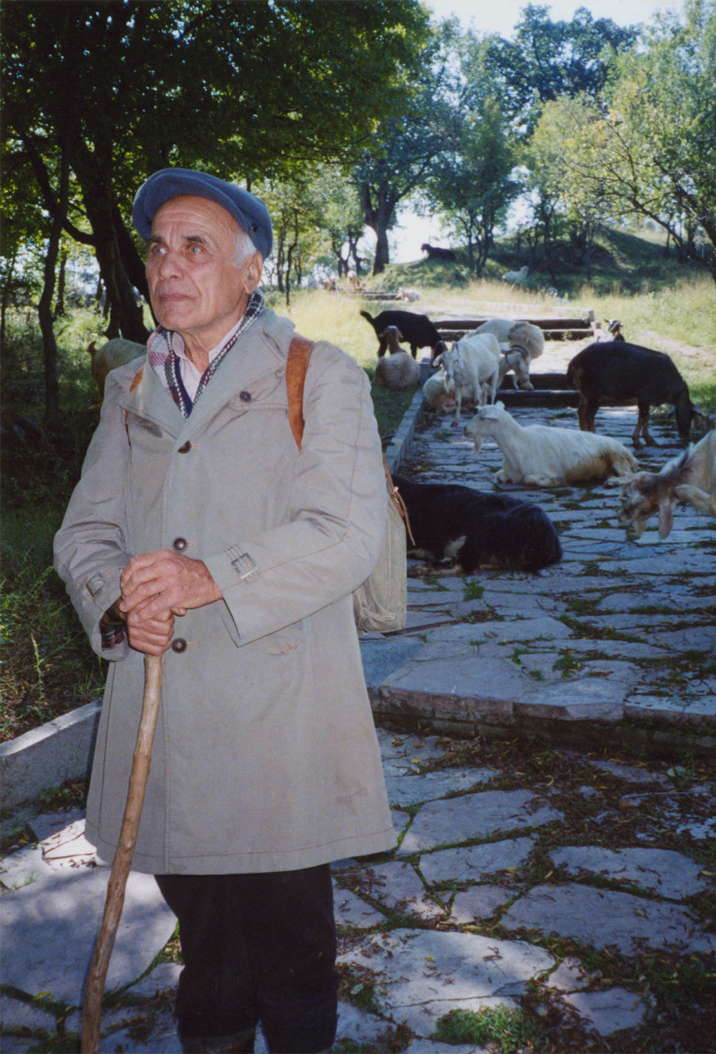 <p>A goatherd in central Bulgaria.</p>
