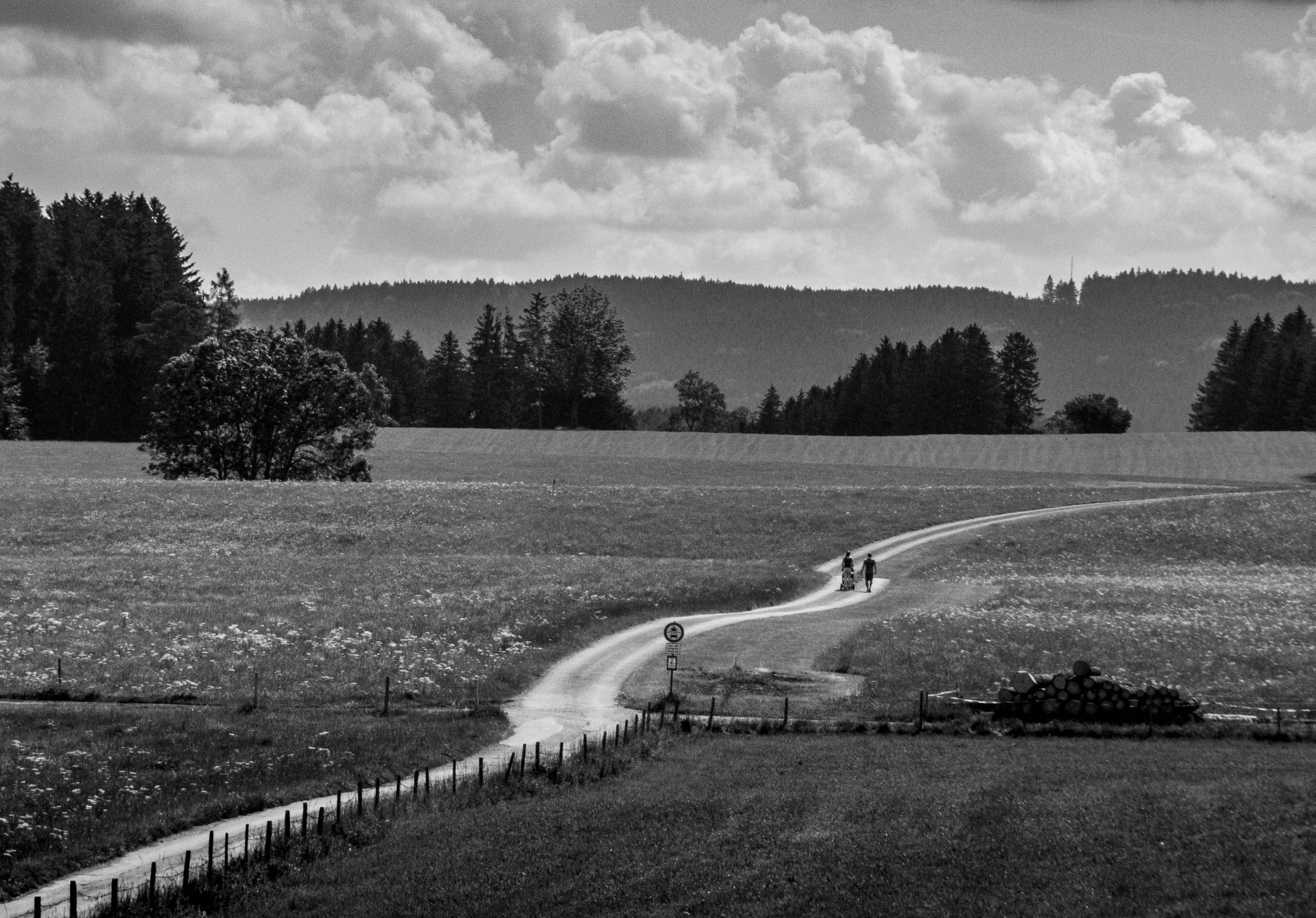 <p>A family walks through the fields outside Marktoberdorf, Bavaria.</p>