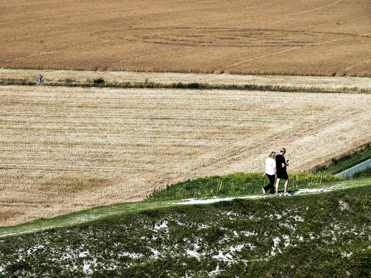 <p>Fields of varying patterns (and crop circles?!) near Stonehenge. </p>