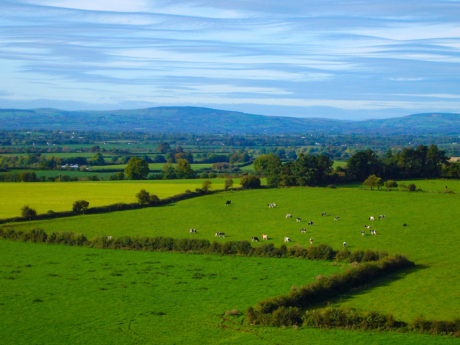 <p>A silky sky hangs over fields near the Rock of Cashel in County Tipperary.</p>