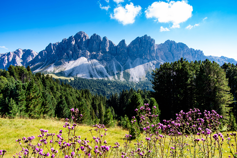 <p>A view of the Dolomites from the Alta Via Dolomiti trail, near Villnöß. </p>