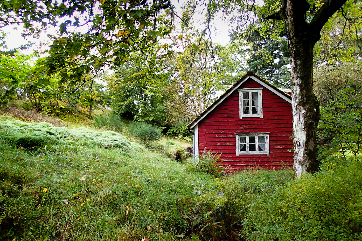 <p>A quiet (abandoned?) cabin in the forests of Askøy, an island off Norway's coast near Bergen.</p>